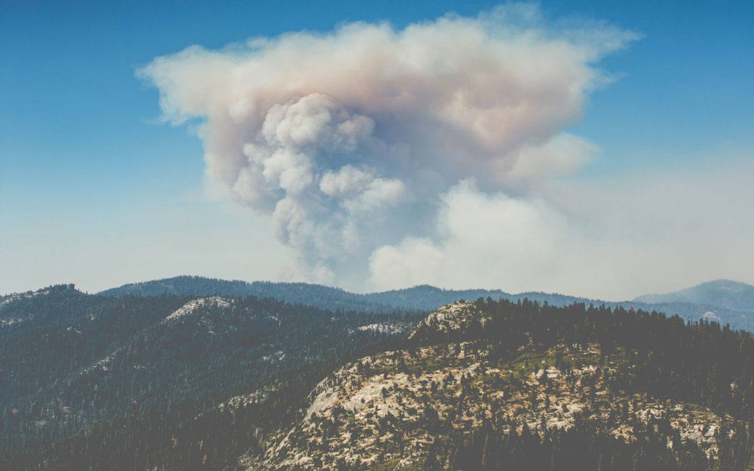 How States, Including CA, are Fighting Fires